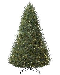 Fraser Fir Christmas Trees Nc by Balsam Fir Christmas Trees Balsam Hill