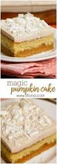 Healthy Chocolate Pumpkin Desserts by Best 25 Chocolate Curls Ideas On Pinterest Chocolate Mousse