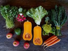 Hillcrest Farms Pumpkin Patch by Organic Farming In San Diego Suzie U0027s Farm