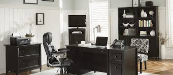 Sauder Shoal Creek Executive Desk by Home Page