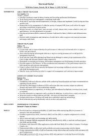 Download Credit Manager Resume Sample As Image File