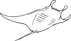 Sea Animal Coloring Pages Printable For Ocean Regarding Inspire