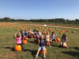 Pumpkin Picking Nj Colts Neck by Conover Road Primary Conoverprimary Twitter