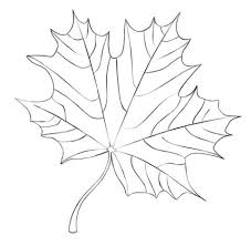 Click To See Printable Version Of Maple Leaf Coloring Page