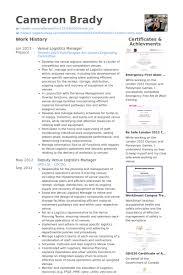 Venue Logistics Manager Resume Example