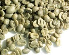 Yemen Mocha Green Coffee Beans