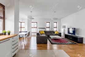 modernes apartment mit offenem wohnzimmer und küchenzeile