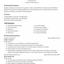 Awesome Summary Samples For Resume Atclgrain