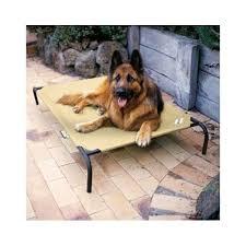 coolaroo extra large dog bed elevated pet beds luxury raised mat