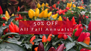 Sales & Coupons | Gulley Greenhouse & Garden Center Primordial Solutions Home Facebook If You Ever Buy Plants Youll Love This Trick Wikibuy 30 Off Hudson Valley Seed Library Promo Codes Top 2019 View Digital Catalog Leonisa Discount Code Gardeners Supply Company Coupon Groupon 50 Promotion October Online Coupons Thousands Of Printable Midwest Arborist Supplies Penguin Stickers Chores Household Tasks Laundry Fitness Cleaning Gardening Planner Voucher Codes Food Save More With Overstock Overstockcom Tips Mygiftcardcom