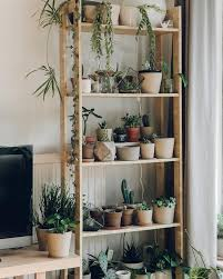 Rustic Living Room Decor With DIY Indoor Tall Flower Pots Shelves Solid Bamboo Wood Frame