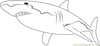 Lock Screen Coloring Great White Shark Pages With Page Free