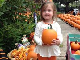 Ms Heathers Pumpkin Patch Louisiana by Mapping The Pumpkin Patches In Greater New Orleans