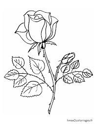 fleur pot az coloriage