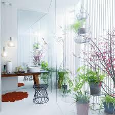 pflanzen im bad 4 ideen für helle dunkle bäder