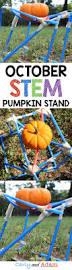 Pumpkin Festival Hamilton Ohio by Best 25 Fall Festival Crafts Ideas On Pinterest Halloween Games