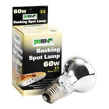 Reptile Heat Lamps Uk by Buy Reptile Basking Spot Bulbs Online Reptile Centre
