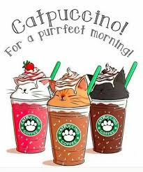 Can Starbucks Be Any Perfect Than This Imagine How Awesome