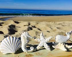 White Starfish Cabinet Knobs by Nautical Knob Etsy