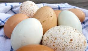 Bad Eggs Do They Float Or Sink by Farm Fresh Eggs And How To Tell When They U0027re Not Honest Fare