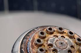 Serratia Marcescens Bathroom Treatment by What Is The Orange Stuff On The Wall Of A Bathroom Shower Hunker