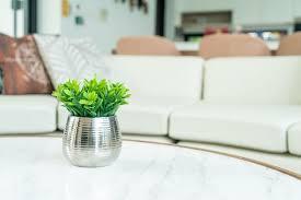 pflanze in vase dekoration auf tisch im wohnzimmer premium