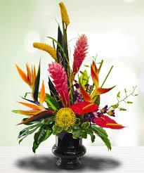 Spirit Halloween Sarasota Hours by A Taste Of Tropics A Tropical Delight Sarasota Florist
