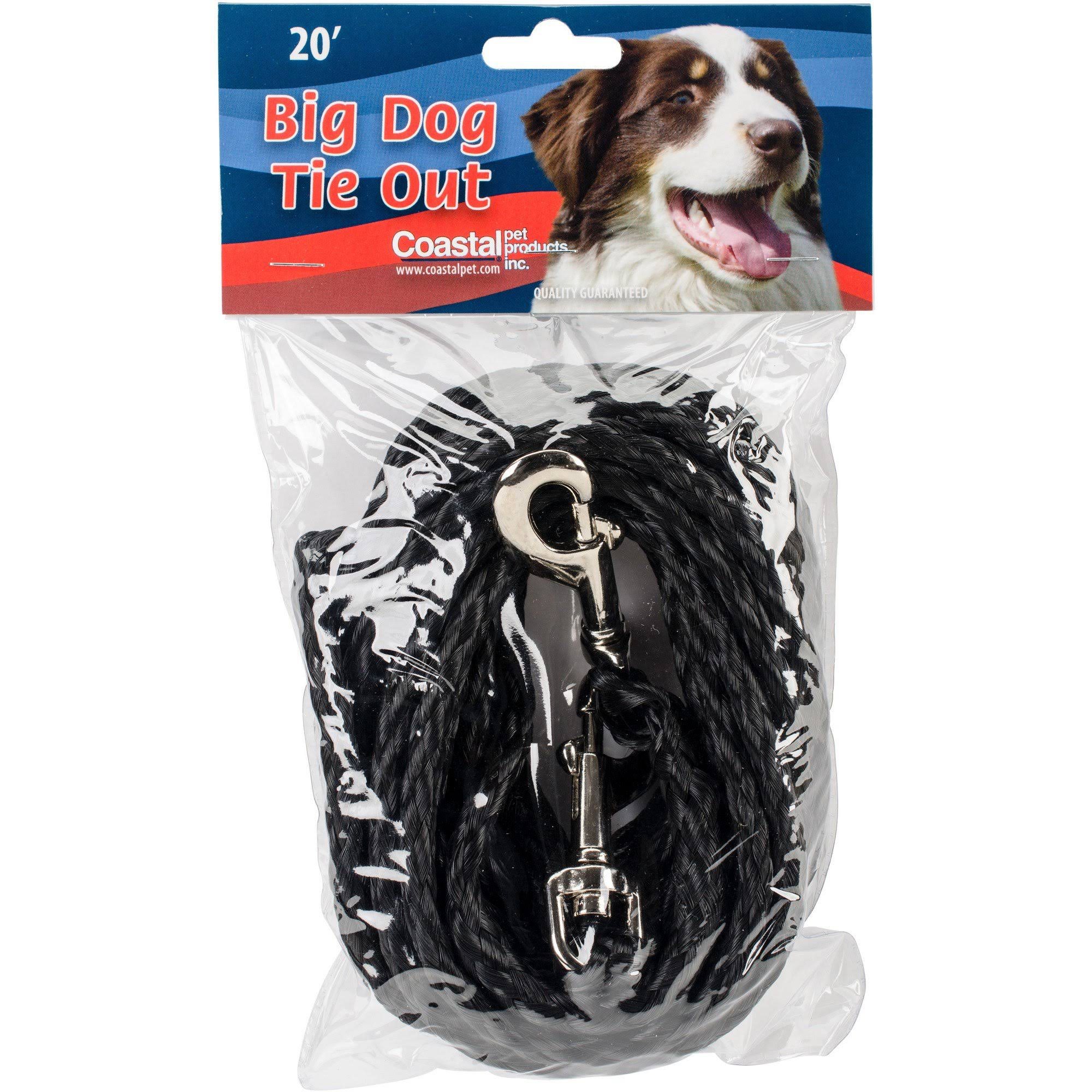 "Coastal Nylon Poly Dog Tie Out - Black, 3/8"" x 20'"