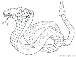 Wild Animals Coloring Pages Kids Animal Book