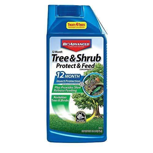 Bayer Advanced 701810 12-Month Tree and Shrub Protect and Feed Concentrate
