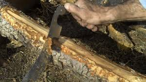 How To Peel Logs Make Log Furniture