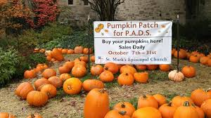 Oak Glen Pumpkin Patch Address by St Mark U0027s In Glen Ellyn Sells Pumpkins For A Cause