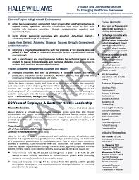 CFO Resume Sample Chief Financial Officer