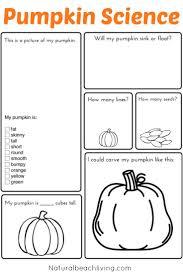Peter Peter Pumpkin Eater Poem Printable by Best 25 Pumpkin Life Cycle Ideas On Pinterest Cycle Of Life