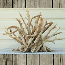 Driftwood Christmas Trees Nz by Driftwood Sculpture Driftwood Table Decor Driftwood Table