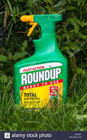 ROUNDUP FAST ACTION WEEDKILLER WITH GLYPHOSPHATE BY MONSANTO