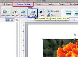 Remove Background Button Within Format Picture Tab Of The Ribbon