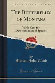 100 John Elrod The Butterflies Of Montana With Keys For Determination Of