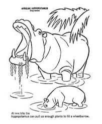 Yawning Hippo Wild Animal Coloring Page