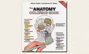 Anatomy Coloring Book For Yoga Download Free Th Edition Physiology