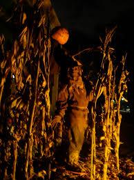 Kings Island Halloween Haunt by Cedar Fair Haunt News August 2010