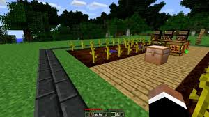 Minecraft Pumpkin Farm 111 by Minecraft Pumpkin Farm Pictures To Pin On Pinterest Thepinsta