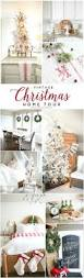 Flocked Real Christmas Trees by Best 25 Live Christmas Trees Ideas On Pinterest Natural