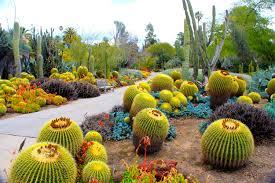 Laptophd Nature Wallpaper Tumblr Garden San California Cactususa Plant Botanical Marino HD
