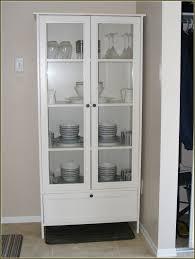 Lockable Medicine Cabinet Ikea by Curio Cabinet 0177051 Pe329681 S5 Jpg Fabrikac296r Glass Door