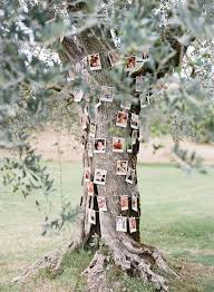 Chic Wedding In Tuscany Featuring This Keepsake Photo Install A Rustic Tree Setting
