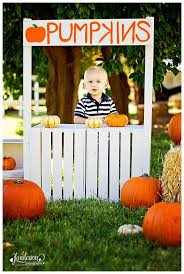 Glendale Pumpkin Patch by 20 Best Christmas Backdrop Images On Pinterest Christmas Parties