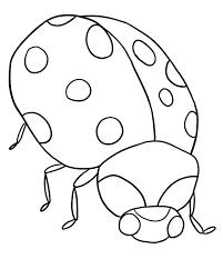 Lady Bug Coloring Pages Free Printable Ladybug For Kids Line Drawings