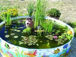 Aquascape Patio Pond Canada by Plastic Kiddie Pool Pond Kiddie Pool Fish Pond Bury In The