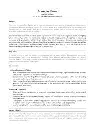 Skill Set Resume Example Experience Based Template
